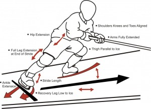 Stride Mechanics